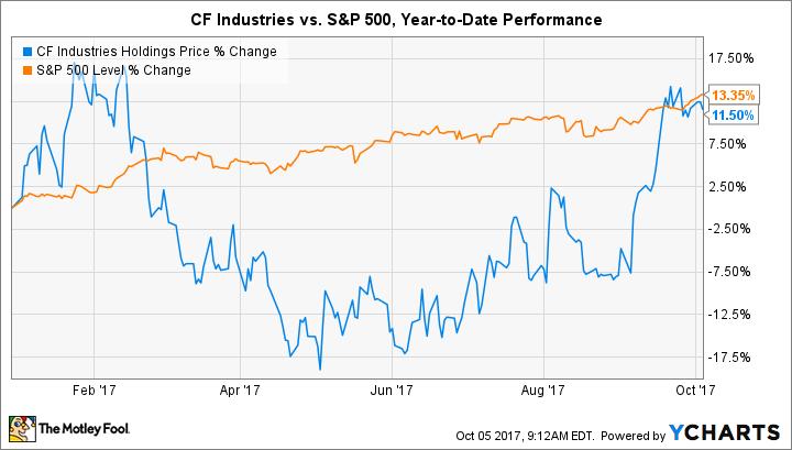 CF Chart